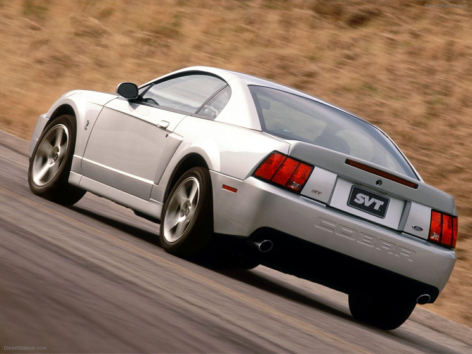 Mustang Terminator Pulley